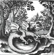 Ouroboros_dragon