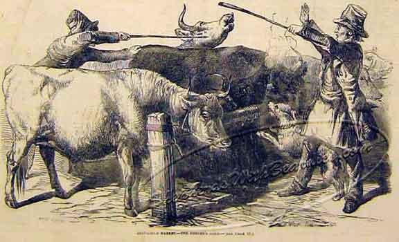 SmithfieldMarket-ILN-0721-1849